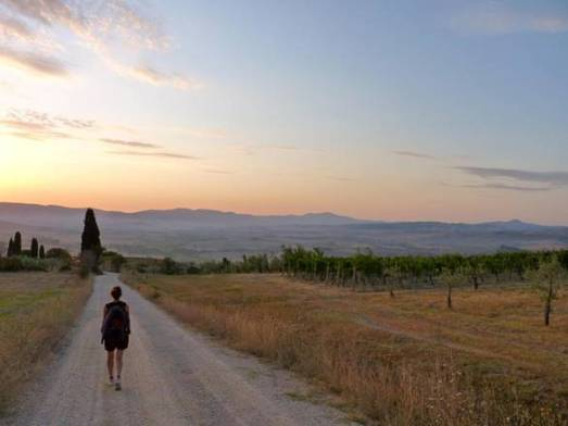 Festival Via Francigena Collective Project 2015